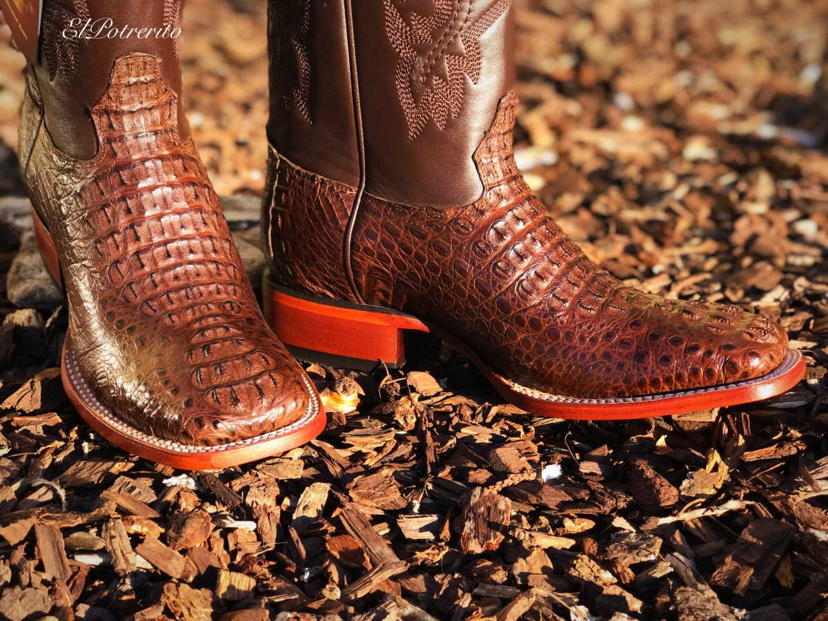 Los Altos - Men's Caiman Hornback Square Toe Boots ( Brown )
